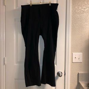 Torrid work pants